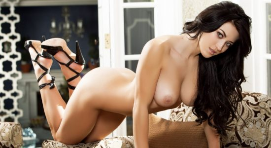Stefanie Knight Sexy Playboy brunette